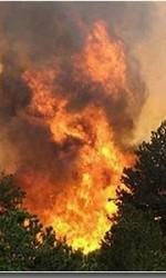 Пожар в Козельском районе